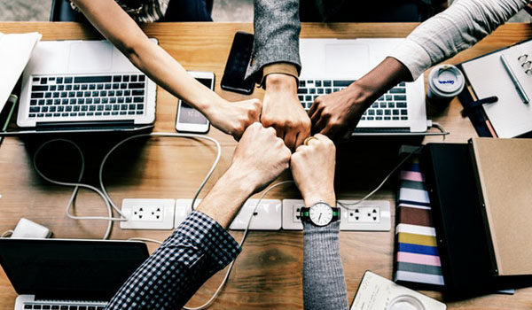 Project management services and team success.